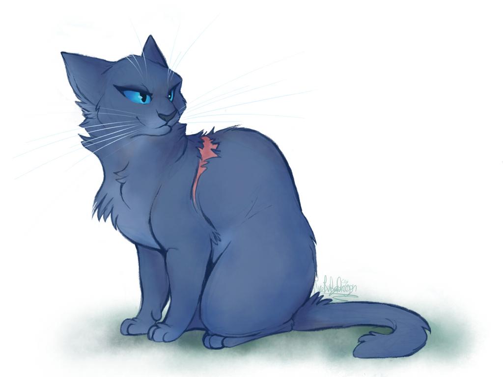 картинки голубой звезды коты воители