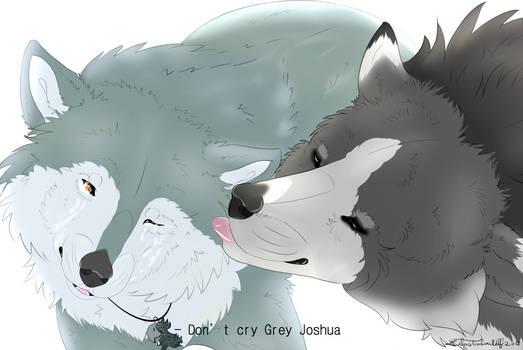 [AT] Grey Joshua x Lilas
