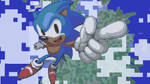 Minecraft - Sonic the Hedgehog by donfeuxvideo
