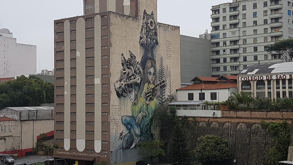Art in Sao Paulo by leospica