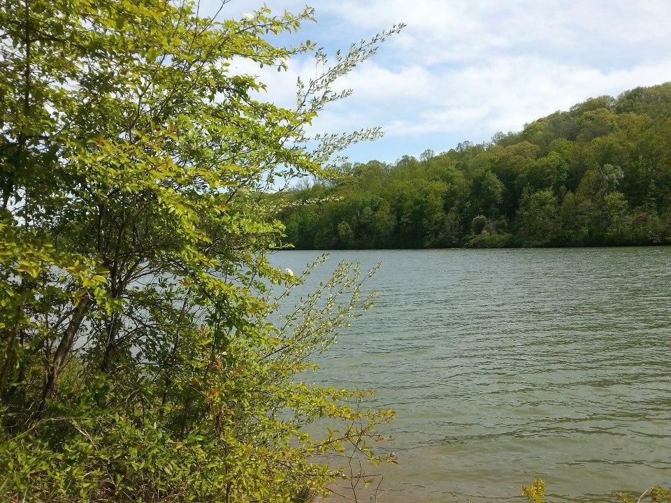 Lake by Slicenndice