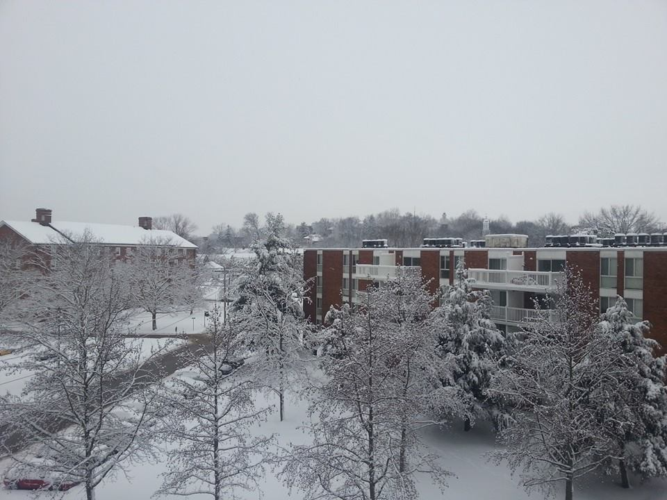 Snow Day by Slicenndice