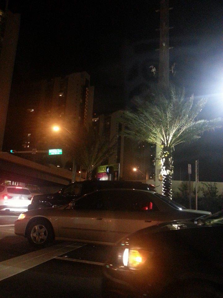 Nighttime in Miami by Slicenndice