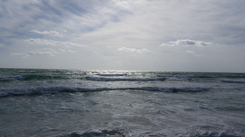 Waves by Slicenndice