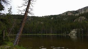 Lake In The Rain by Slicenndice