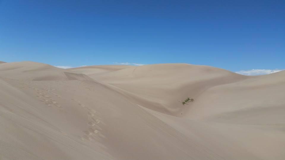 Desolate by Slicenndice