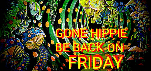 GONE HIPPIE BE BACK ON FRIDAY