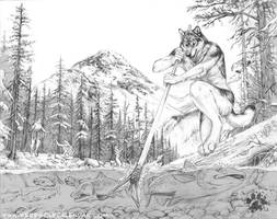 Salmon Run - Sketch by screwbald