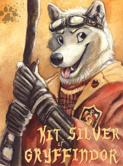 Kit Silver Badge by screwbald