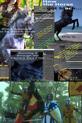 Bannockburn: WIP How the horse got black...