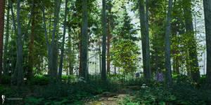 DAZ3D Forest Landscape study: Noon