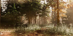 DAZ3D Forest Landscape study: Afternoon