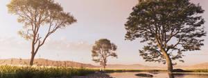 DAZ3D Landscape Study: Savannah