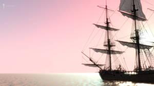 Pirate (13)