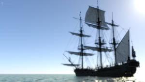 Pirate (21)
