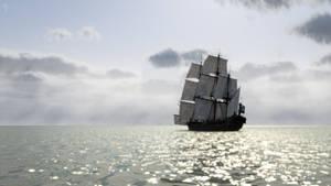 Pirate (27)