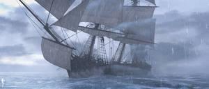 Pirate (30)