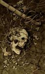 roa-death