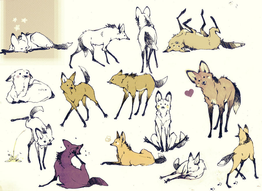 A Lot Of Maned Wolf By Loputyn On DeviantArt