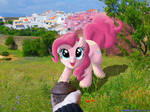 Meet Pinkie? Feed her a muffin by DeathPwny