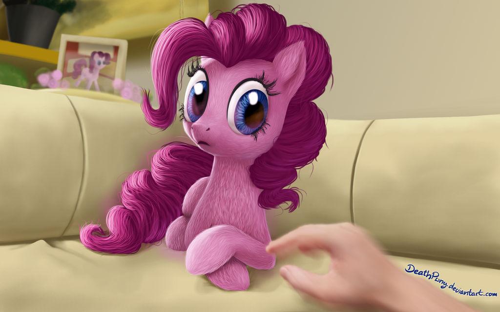 Such Little, Much Pink, Very Pone. Wow
