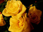 Birthday Flowers 2