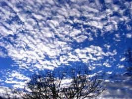 Blue Winter Sky 1 by PridesCrossing