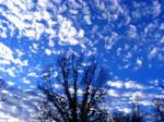 Blue Winter Sky 2 by PridesCrossing