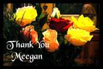 Thank You Meegan