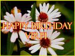 Happy Birthday Virpi