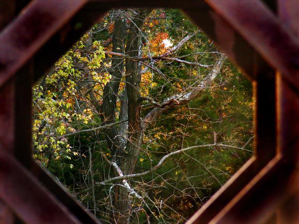 Memories Of Fall 2008 27 by PridesCrossing