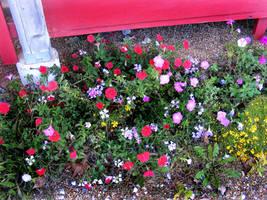 Abandoned Garden by PridesCrossing