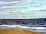 Virginia Beach 2 by PridesCrossing