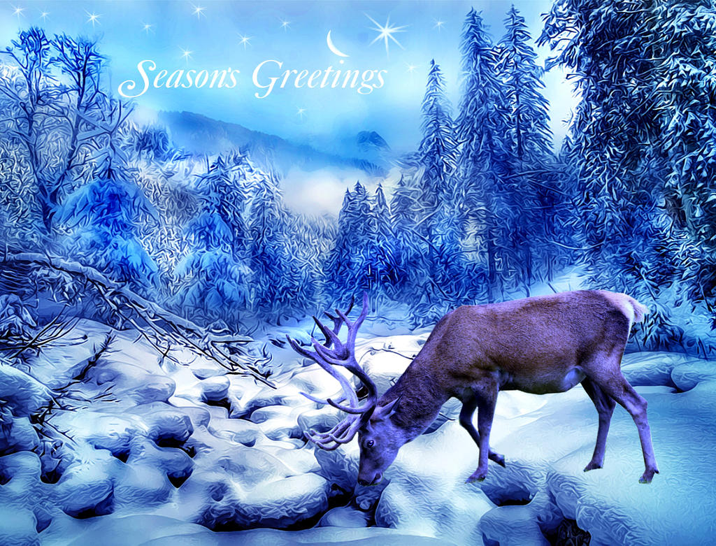 Seasons Greetings 2013 by PridesCrossing