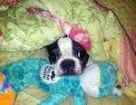 Molly Keeping Warm