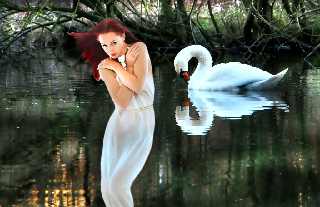 Swan Lake by PridesCrossing