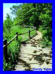 Missouri,Nature Trail 2
