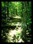 Missouri,Nature Trail 4