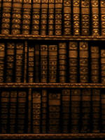 Books by Trisa-Sxy-Stock