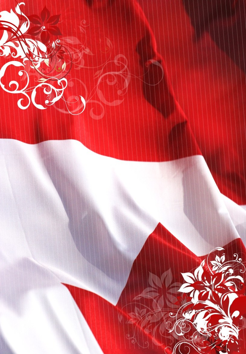 http://fc09.deviantart.net/fs32/f/2008/231/6/2/indonesia_flag__independence_by_mikzack.jpg
