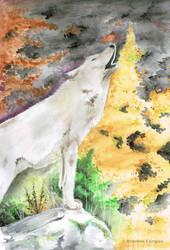 Wolf by stickerb