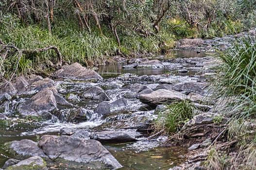 Trickling creek
