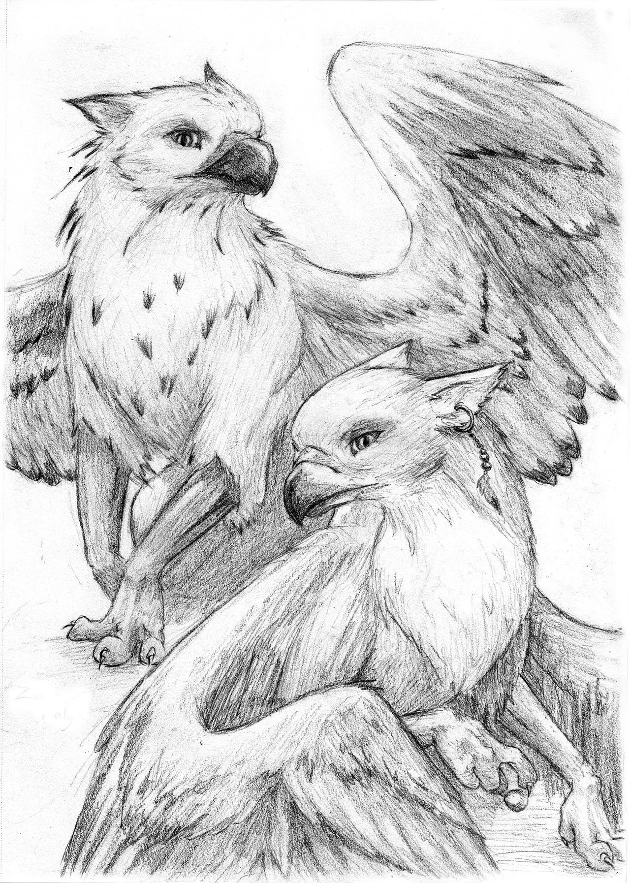 Zaer and kalya gryphon couple by gryphelyse on deviantart for Dibujos de grifos