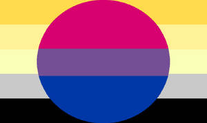 Bi- Angled AroAce Combo Pride Flag