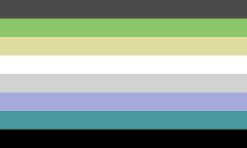 Gender Agnostic Pride Flag