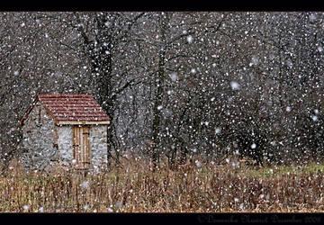 Snow by Goodbye-kitty975