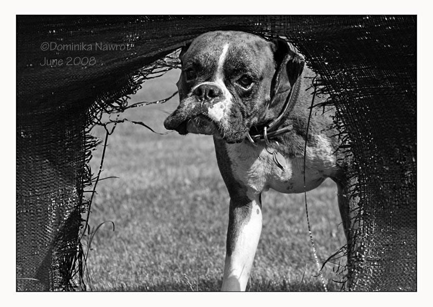 bad framing photography. Kole Demonstrates Natural Framing. Bad Framing Photography A