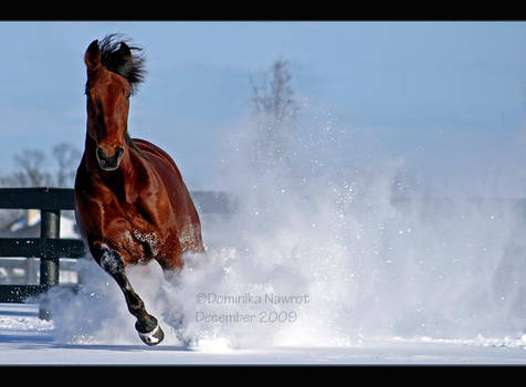 Snow Charge