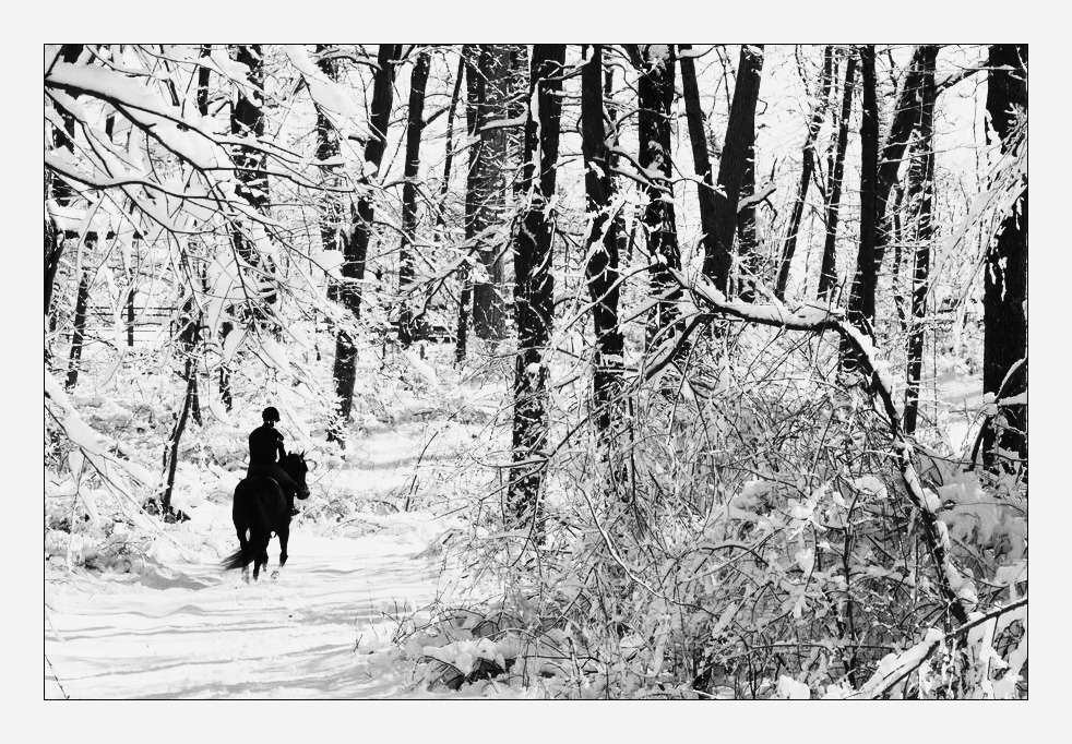 Walking in a Winter Wonderland by Goodbye-kitty975