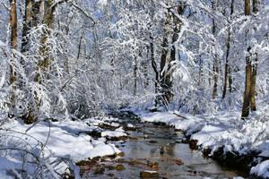 Winter Stream Crossing by Goodbye-kitty975